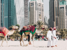 When's the Best Time to Visit Dubai? ...holiday planning starts here.