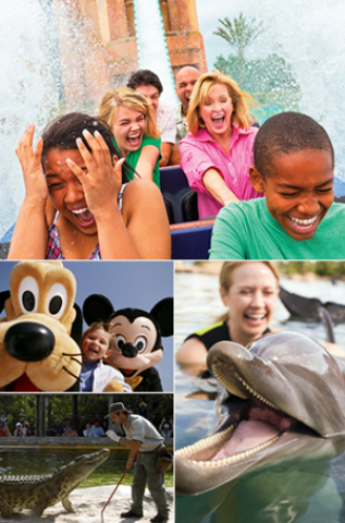 how to download disney photopass photos without watermark
