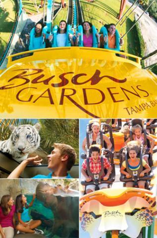 busch gardens tickets tampa. Busch Gardens Tickets Tampa