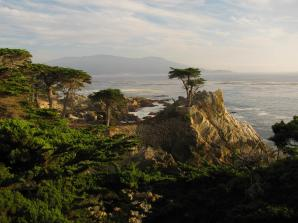 Day Trip to Monterey and Carmel from San Francisco
