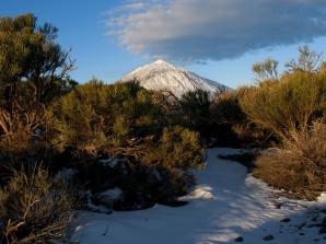 Mount Teide & Las Cañadas National Park