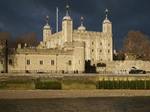 River Thames Hop-on Hop-off Sightseeing Cruise & Tower of London Combo Ticket