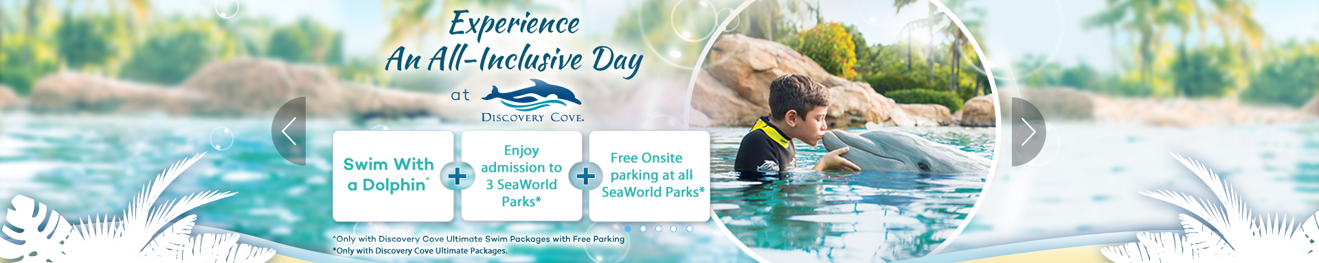 Experience An All-Inclusive Day At Discovery Cove